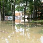 The Floods (#2)